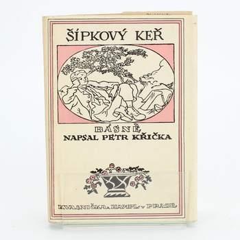 Kniha Šípkový keř Petr Křička