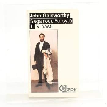 Kniha Sága rodu Forsytů II. díl: V pasti