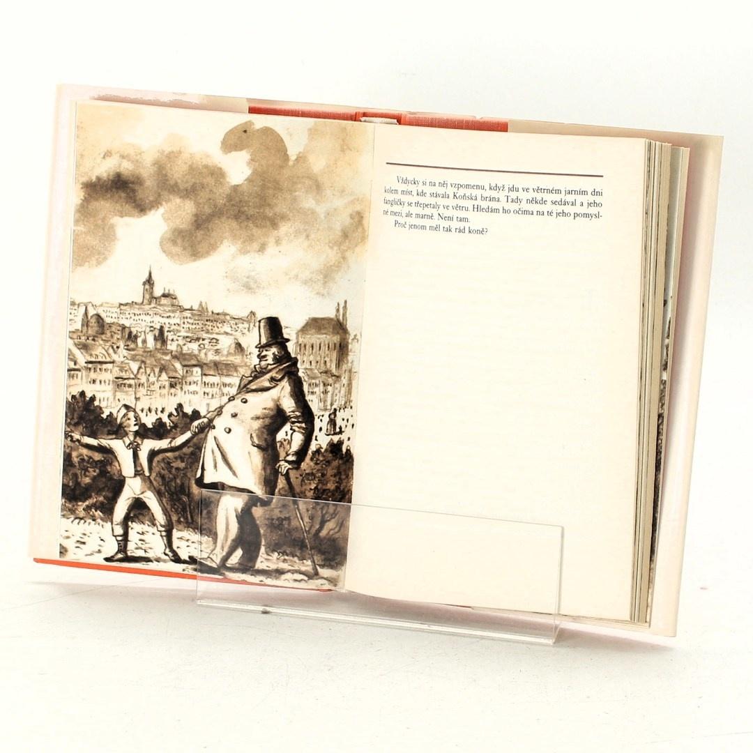 Kniha Václav Cibula: Pražské figurky