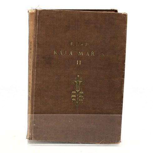 Kniha Felix Háj: Školák Kája Mařík 2. díl