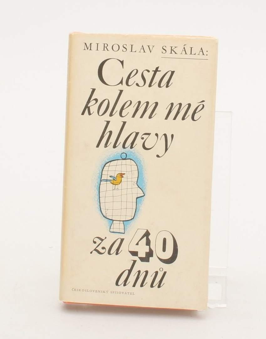 Kniha M. Skála - Cesta kolem mé hlavy za 40 dnů