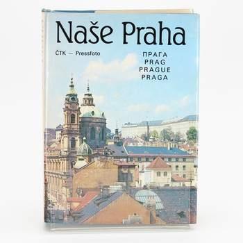 Kniha Naše Praha