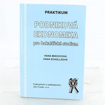 praktikum podniková ekonomika