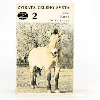 Zvířata celého světa 2: Koně, osli a zebry