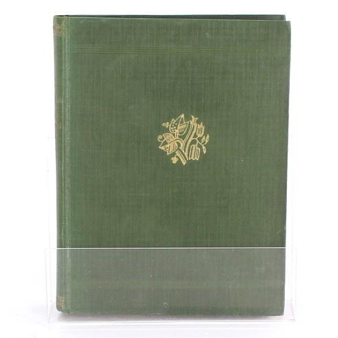 Kniha Železný král a páni Růže