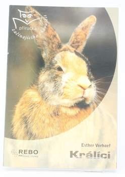 Chovatelská příručka Esther V. Verhallen: Králíci
