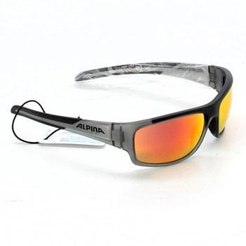 Sluneční brýle Alpina Testido šedivé