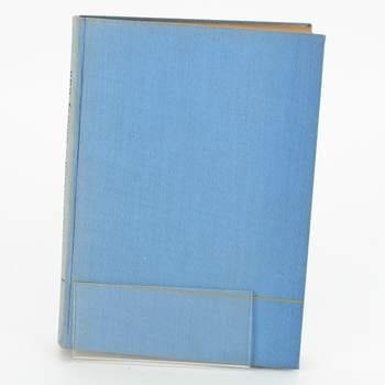 Kniha Ohnivý bůh Heinrich Zerkaulen
