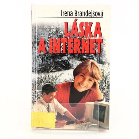 Román Láska a internet, Brandejsová
