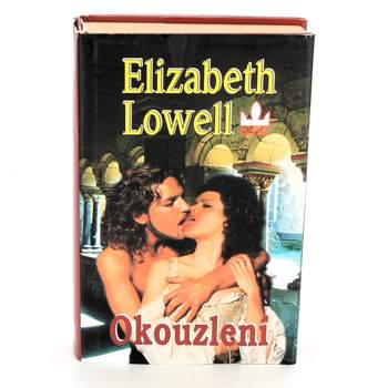 Kniha Elizabeth Lowell: Okouzlení