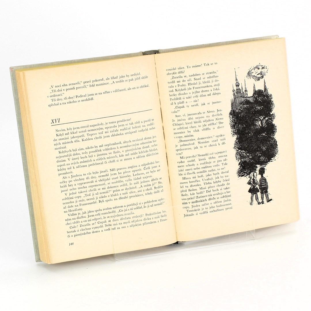 Kniha Helena Šmahelová: Karlínská číslo 5