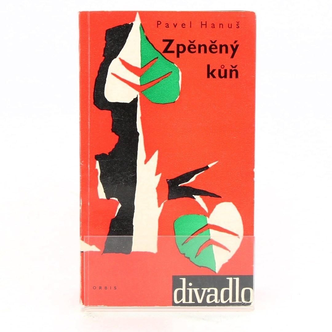 Kniha Zpěněný kůň - P. Hanuš