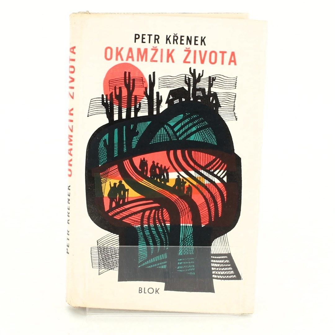 Petr Křenek: Okamžik života