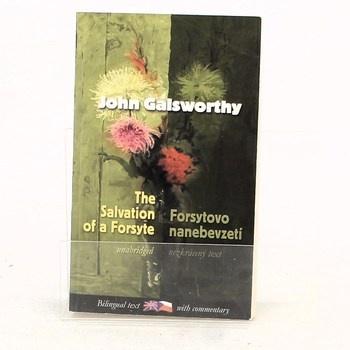 John Galsworthy: Forsytovo nanebevzetí / Salvation of a…