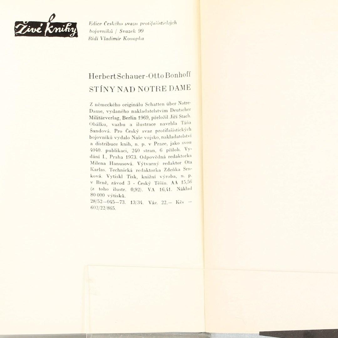 Kniha Stíny nad Notre Dame