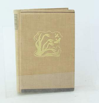Kniha Ben Lucien Burman: Mississippi