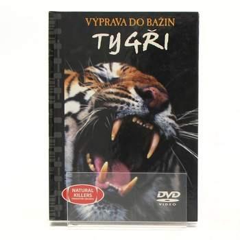 DVD Výprava do bažin - Tygři