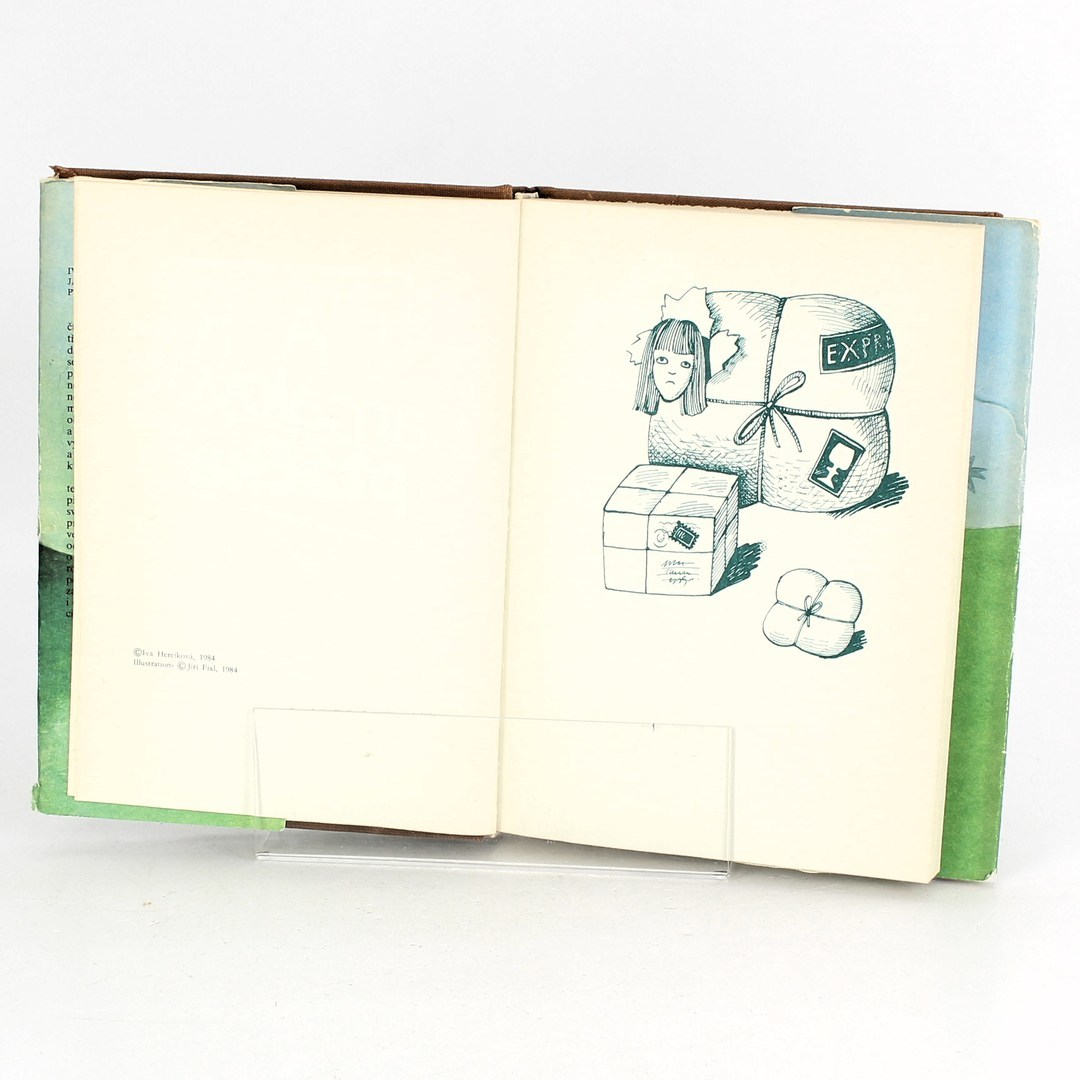 Dětská knížka Jak namalovat ptáčka