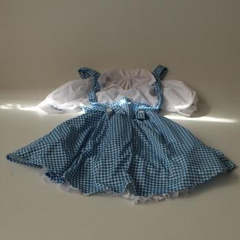 Šaty Dorotka Čaroděj ze Země Oz Rubie's