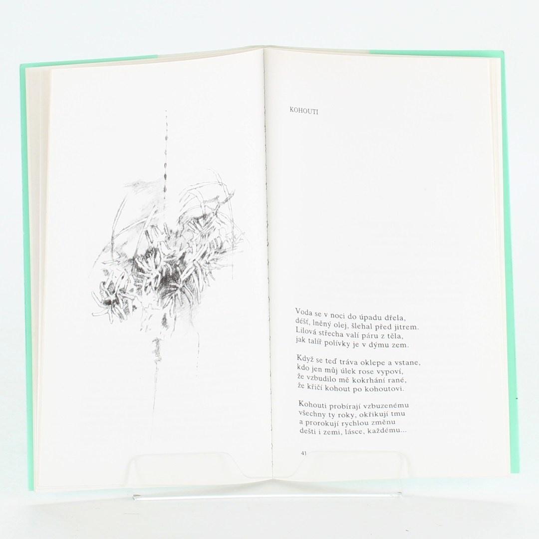 Kniha Život můj bratr - Boris Pasternak