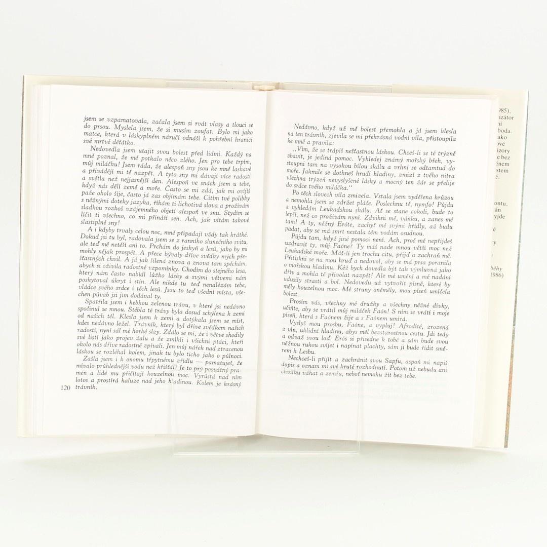 Kniha Příběhy lásky Rudolf Mertlík