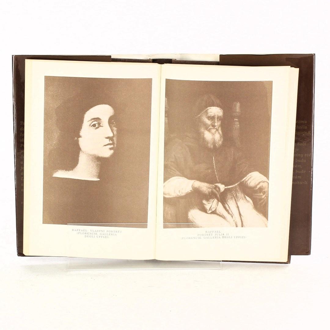 Kniha R. Cristofanelli: Deník Michelangela blázna