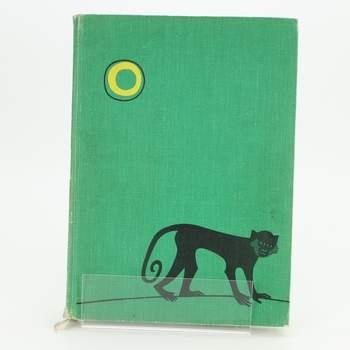 Kniha Zvířata zblízka