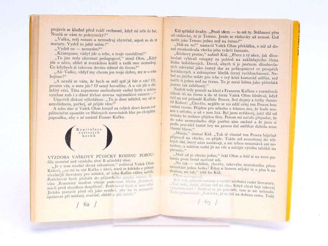 Kniha M. Kubátová: Průšvihy mladého Werthera