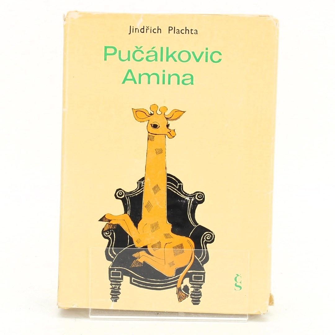 Kniha Jindřich Plachta: Pučálkovic Amina