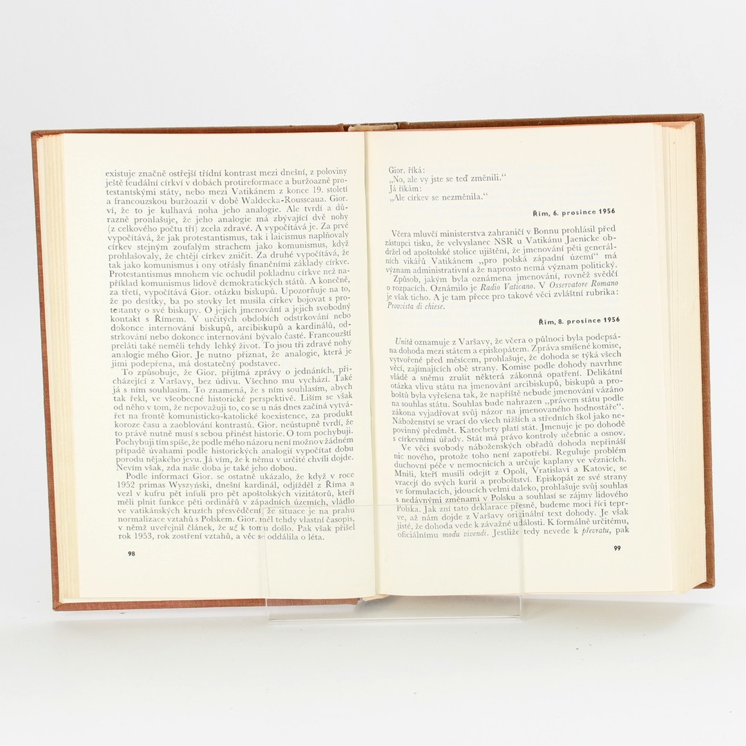 Kniha Tadeusz Breza: Bronzová brána