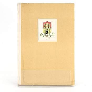 Kniha Jan Alda: Zlatou Prahou stověžatou