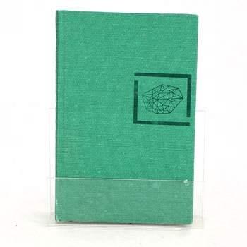 Kniha Robert Barnard - Nezdárný syn