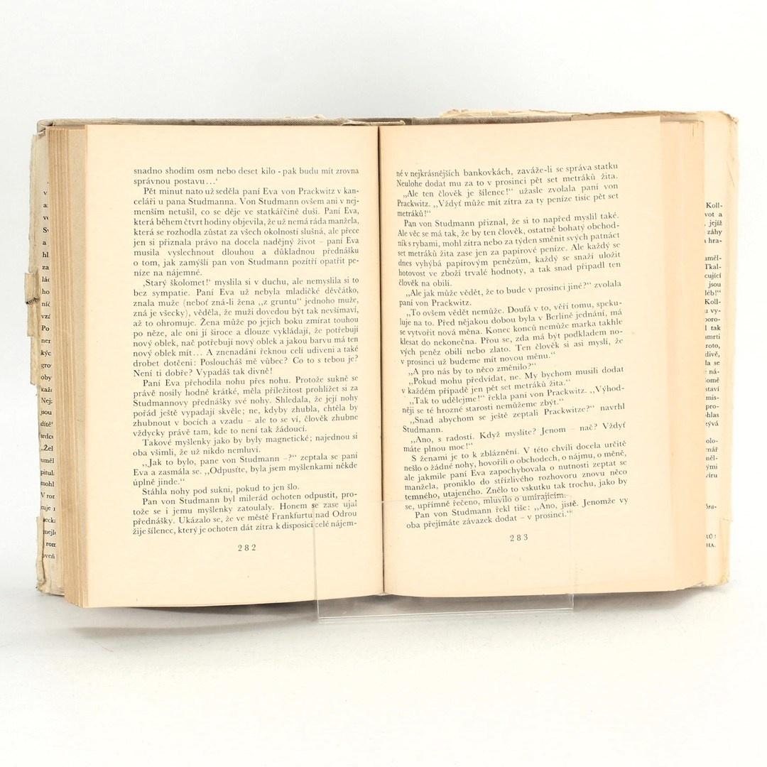 Román Hans Fallada: Vlk mezi vlky II