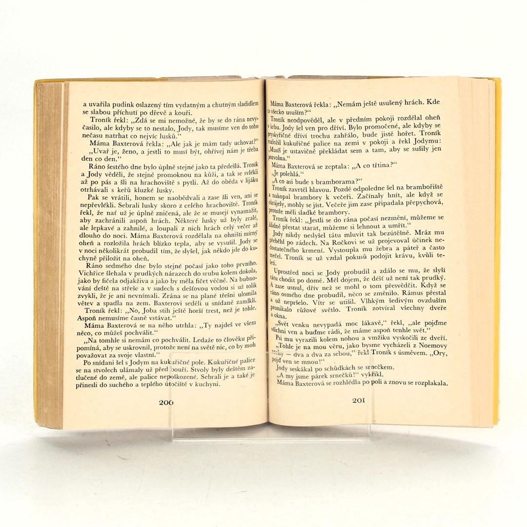 Kniha Mladá fronta Dítě divočiny