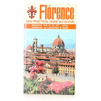 Florence: New practical guide in colour