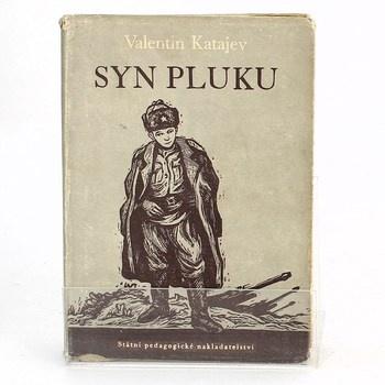 Valentin Petrovič Katajev: Syn pluku