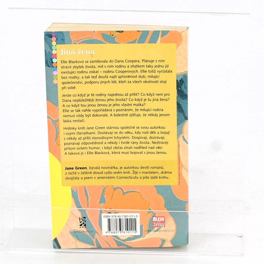 Román Jane Green: Jiná žena