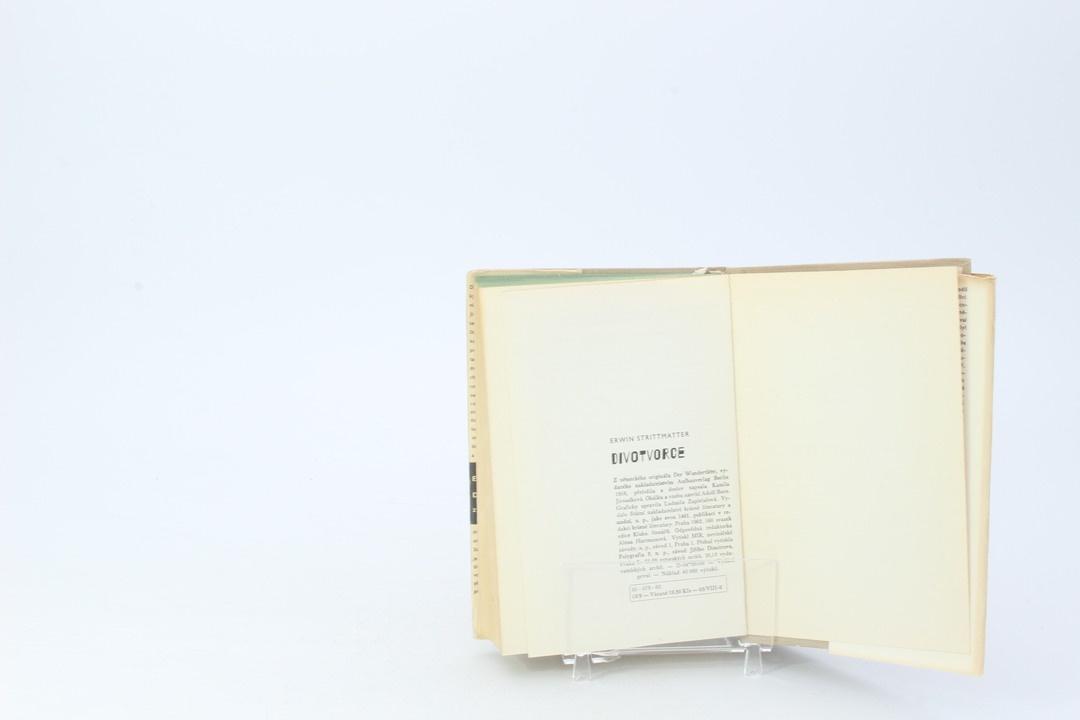 Historický román Erwin Strittmatter: Divotvorce