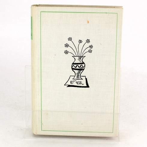 Kniha Karel Matěj Čapek-Chod: Turbina