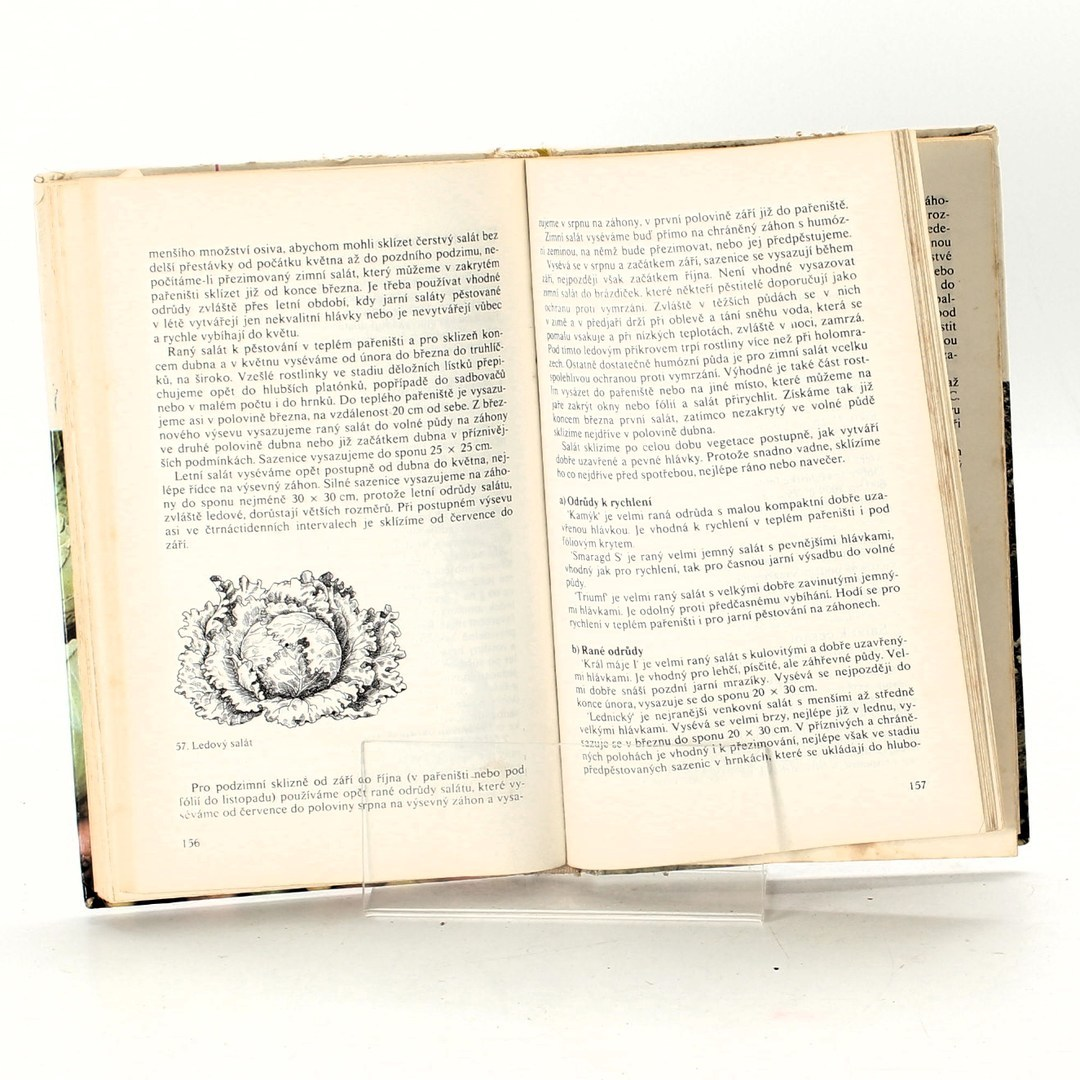 Kniha Antonín Dolejší: Zelenina na zahrádce