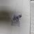 Úložný koš Curver 205839, vícebarevný