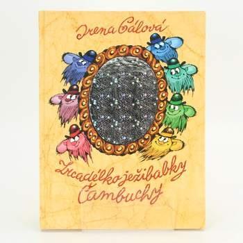 Kniha Zrcadélko ježibabky Čambuchy