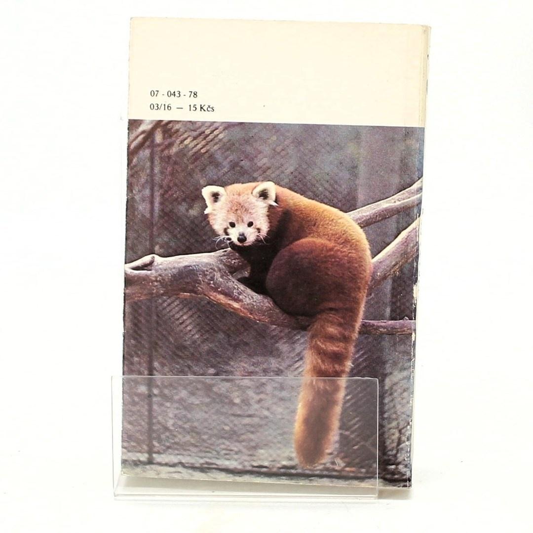 Zvířata celého světa 4: Medvědi a pandy