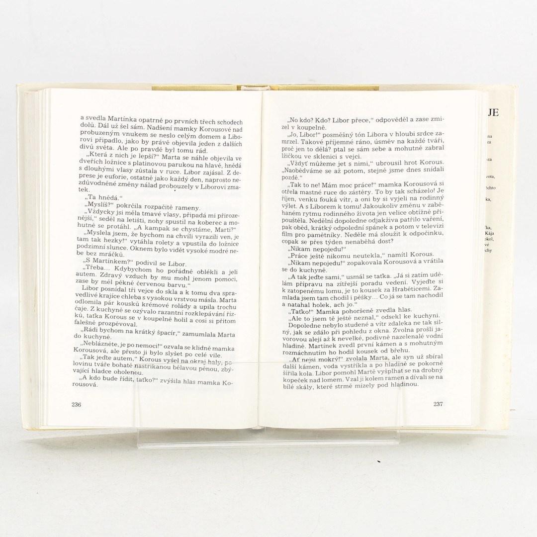 Kniha Petr Čerbák: Diagnóza naděje