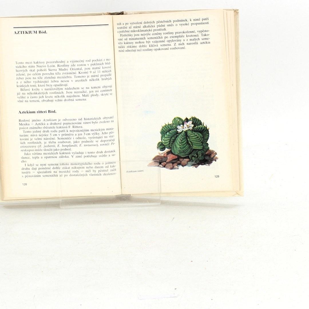 Valerij Dmitrijevič Lobko: Zelení ježci