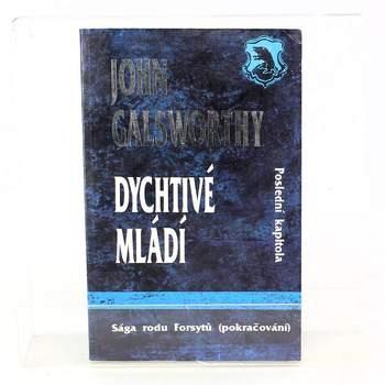 Kniha John Galsworthy: Dychtivé mládí
