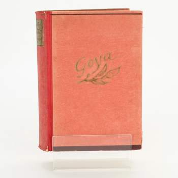 Kniha Don Francisco de Goya