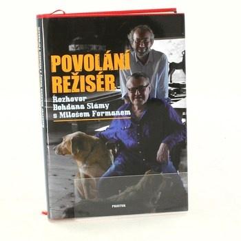 Kniha Povolání režisér