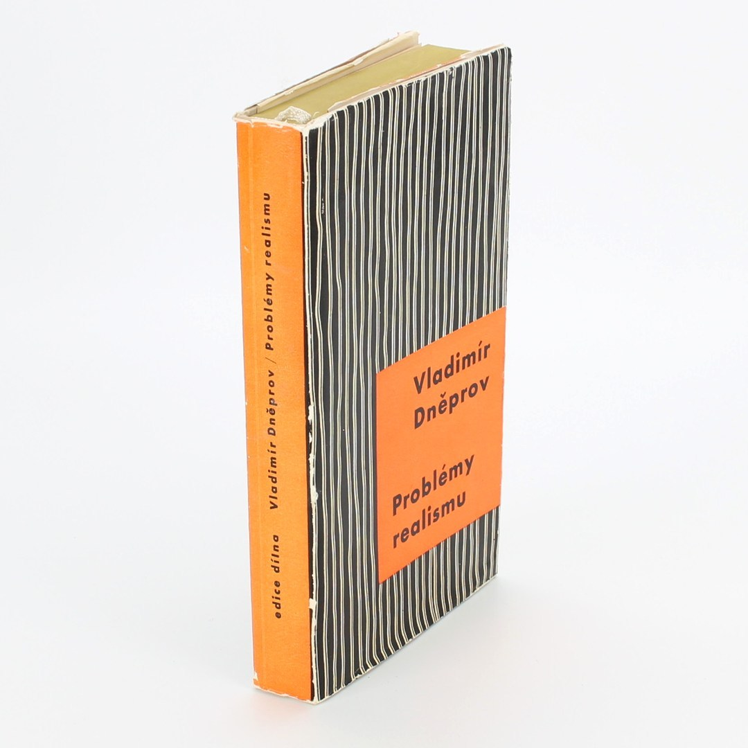 Kniha Problémy realismu V. Dněprov