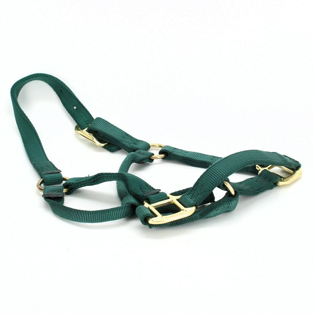 Ohlávka pro koně Hamilton zelená